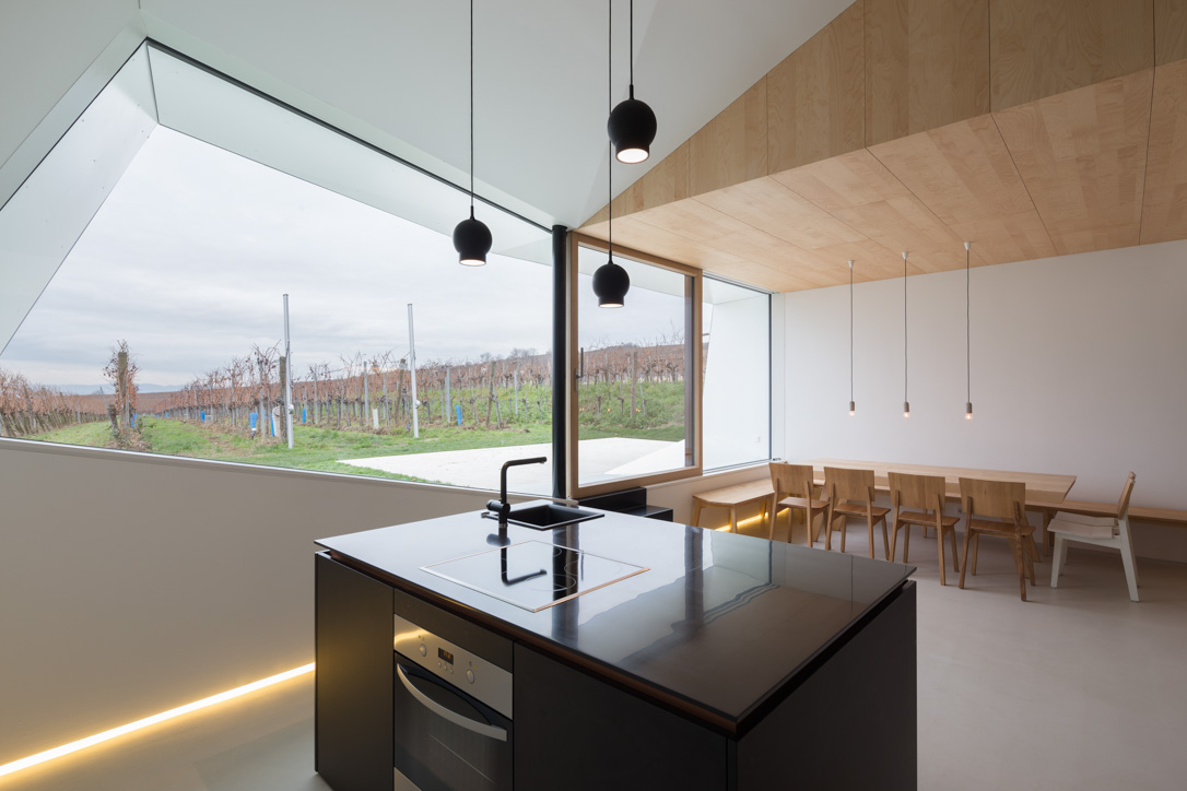 Strobl Winery by Wolfgang Wimmer + March Gut : on flodeau.com 04